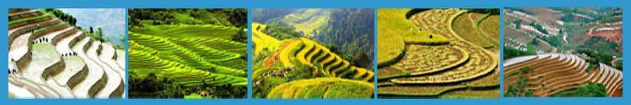 Canh dep Hoang Su Phi