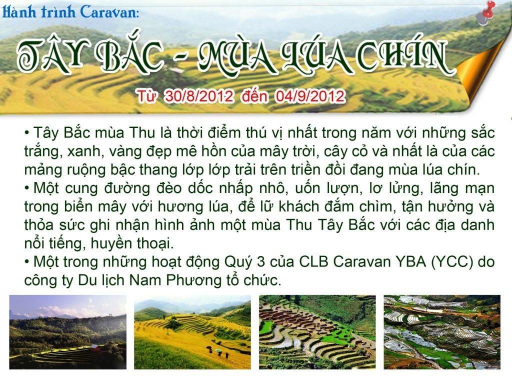 Tay Bac - Mua lua chin