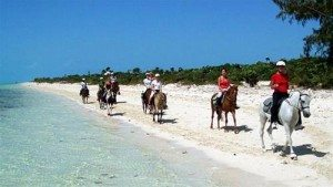 Đảo Providenciales: nơi nghỉ dưỡng biển hàng đầu thế giới