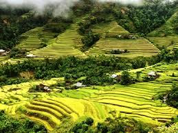 Hà Giang: Bảo tồn những giá trị văn hoá của người La Chí