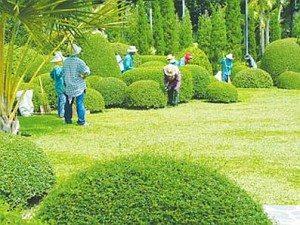 Công viên thực vật Nong Nooch, Thái Lan