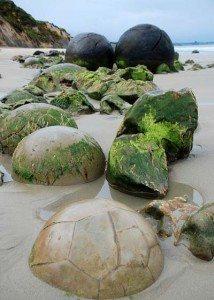 Những khối đá đẹp kỳ lạ ở New Zealand