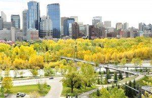 Calgary – sắc thu rực rỡ
