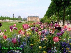 Khám phá lâu đài của tình yêu và hoa lá