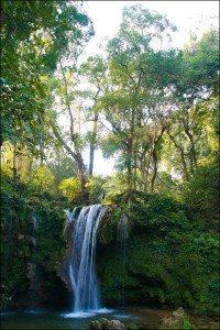 Tham quan vườn quốc gia Jim Corbett – Ấn Độ