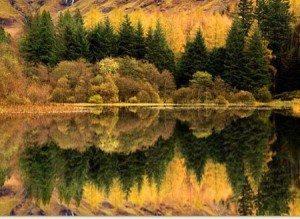 Mặt hồ đẹp lộng lẫy mùa thu