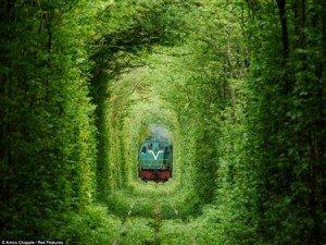 Lãng mạn đường hầm tình yêu