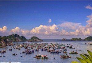 Vẻ đẹp làng chài trên đảo Cát Bà