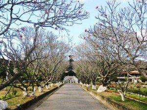 Chủng viện Thừa Sai (Kon Tum): Điểm đến lý tưởng