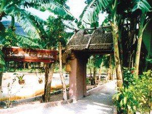 Dấu xưa hồn thu thảo ở làng Việt cổ