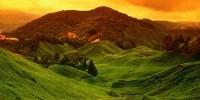 du lich malaysia tham quan cao nguyen xinh dep cameron