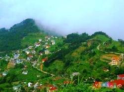 Huyện Tam Đảo (Vĩnh Phúc) đón gần 500 ngàn lượt du khách
