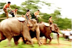 Lễ hội đua voi độc đáo ở Bản Đôn