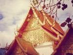 Chiangmai Thai Lan (2)