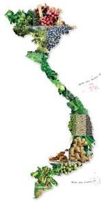 Bản đồ gia vị Việt Nam
