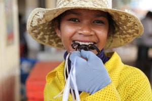 Chợ Côn trùng ở Campuchia