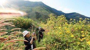 Du ngoạn núi Chư Đăng Ya (Gia Lai)